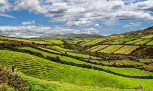 Ireland-Scenic-Greenhills_500